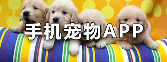 手机宠物App