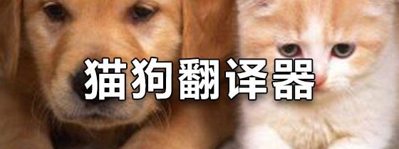 猫狗翻译器中文版