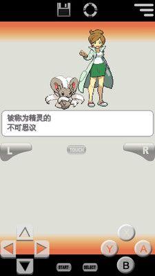 口袋妖怪:白2_图片4