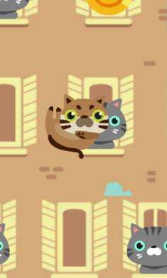 猫猫跳_图片1
