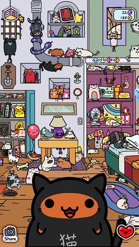 小偷猫咪_图片3