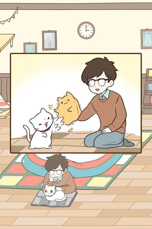 饲养猫咪的生活_图片3