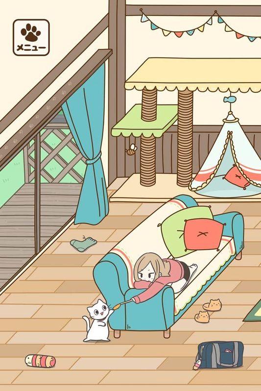 饲养猫咪的生活_图片5