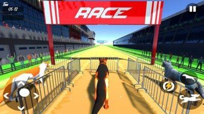 狗狗赛跑模拟器_图片4