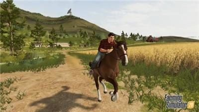 模拟农场22_图片3