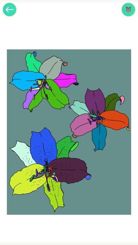 植物填色画画_图片5