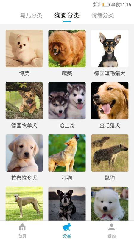 兽语翻译器_图片2