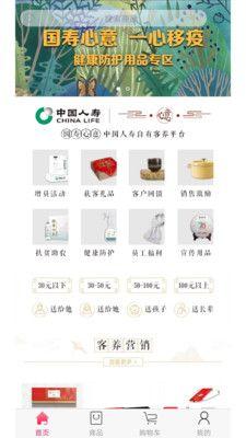 中国人寿电商_图片1