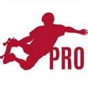 职业自由滑板