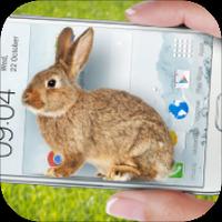 手机的小兔子玩笑