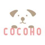 Cocoho日韩购
