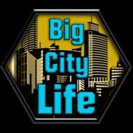 大城市的生活:模拟器
