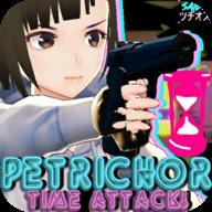 佩特里克:时间攻击