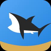 皇家鲨鱼队