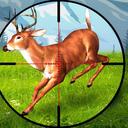 狙击普通的鹿