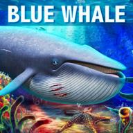蓝鲸模拟器