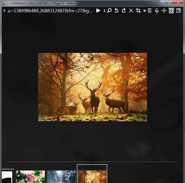 Xlideit Image Viewer