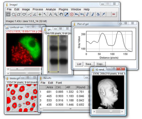 imagej图像处理软件